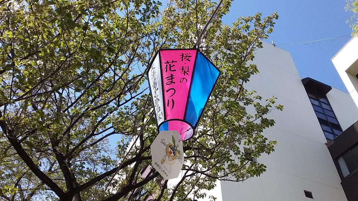 稲城市 桜・梨の花まつり8th