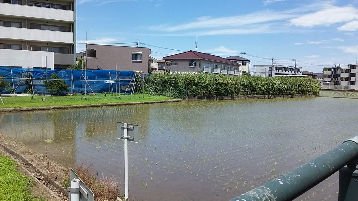 川崎市の農業状況について@都市農研