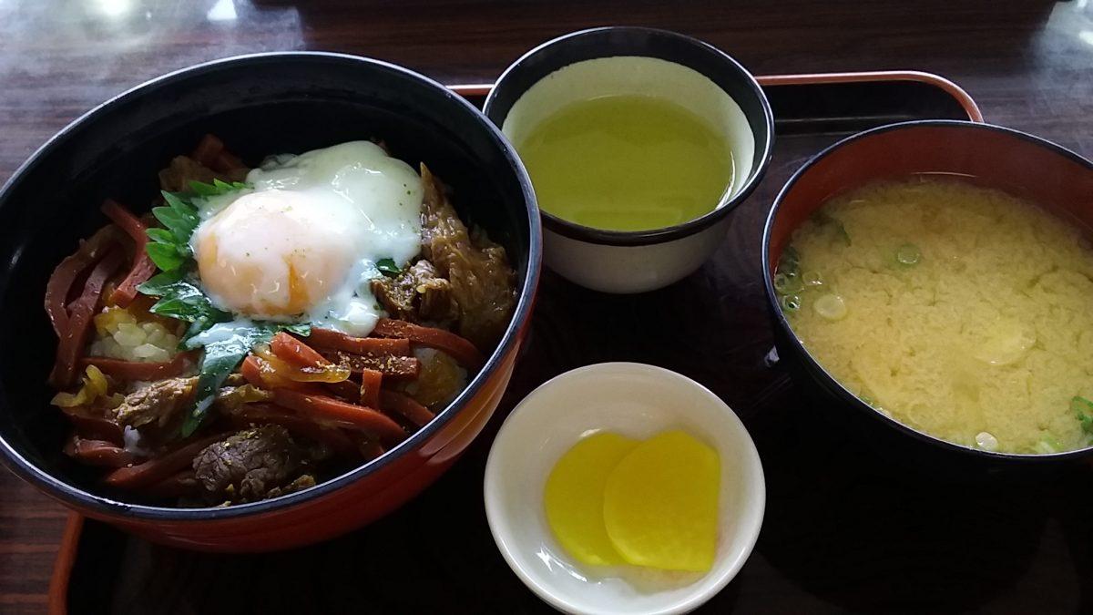 ひとりぼっち新幹線。彦根丼で昼食を 2019